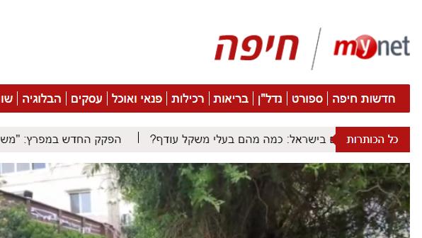 mynet חיפה